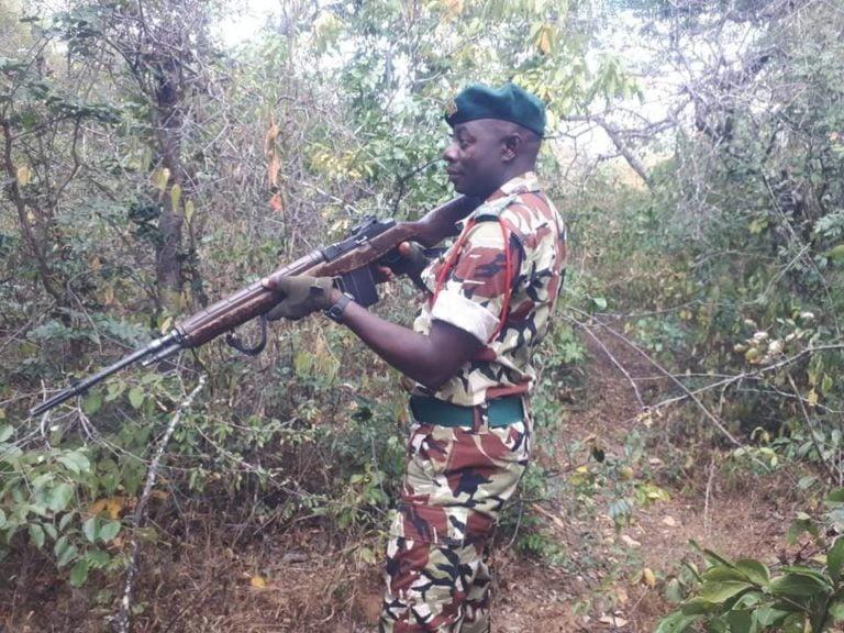 malawi antipoaching